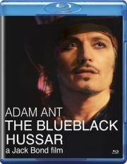 blueblack dvd